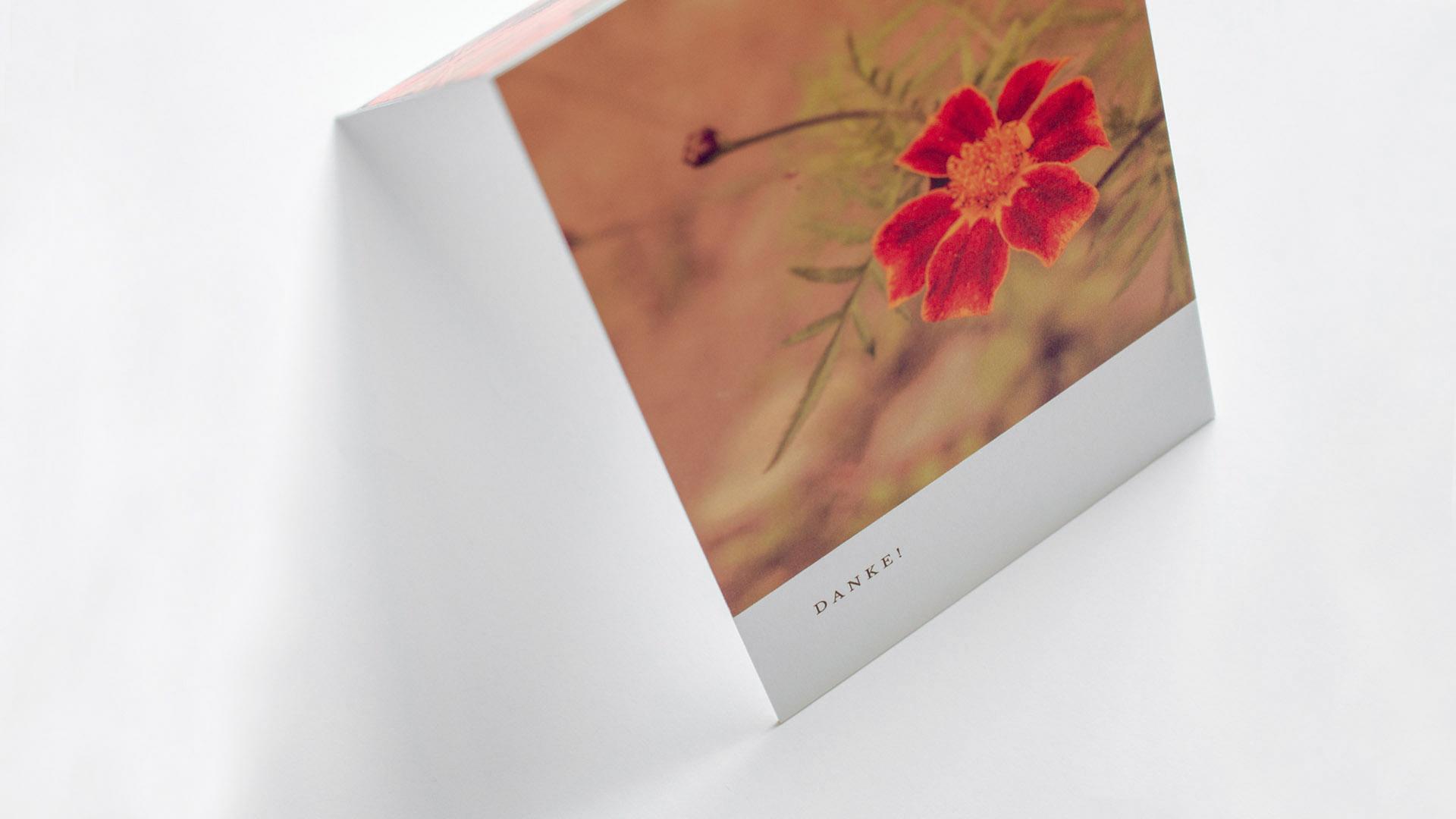 Letterist, Grußkarten-Shop, Fineart Paper
